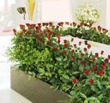 費用事例とお客様の声 お花を増やして華やかに