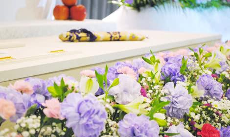 「誇り」の花言葉を持つ紫のカーネーション