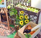 家庭菜園の飾り付けがとても良かったです。