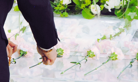 ピンクのカーネーションを献花