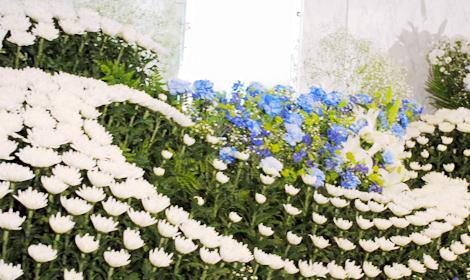 白菊で波を再現